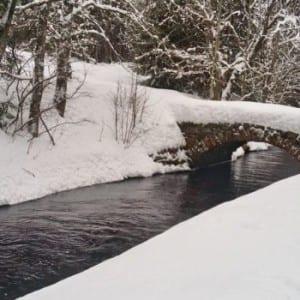 Sněhová krása na Šumavě u Vchynicko-tetovského kanálu