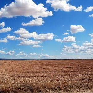 Srážkový deficit a vysoké teploty, letošní hydrologický rok byl mimořádně suchý