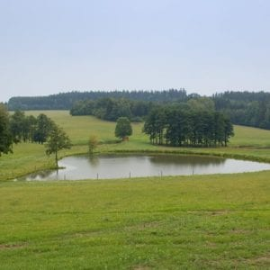 V boji proti suchu vsadili na jižní Moravě na rybníky