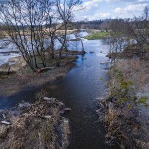 Povodňování zlepšilo vodní režim od Nových Mlýnů až po soutok s Moravou