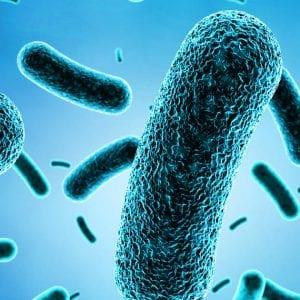 Legionella a jak se proti ní bránit