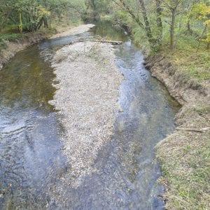 Hejtman ocenil Povodí Moravy za životní prostředí