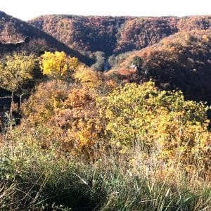 100 milionů pro území národních parků